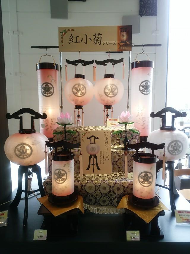 家紋入提灯紅小菊シリーズ